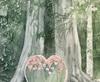 Vign_213_Mon_arbre